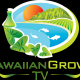 Hawaiian.Grown.TV's picture