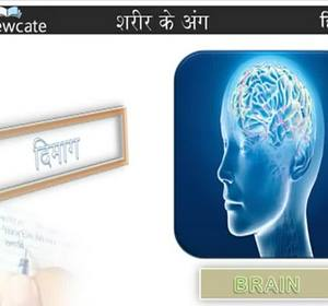 Learn Hindi : Parts of the body Video by Edewcate Hindi   fawesome tv