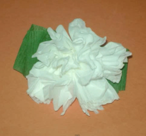 How To Make A Toilet Paper Carnation Flower Video By