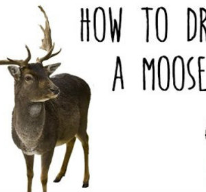 How to draw a moose drawing animals with kids video by how to draw a moose drawing animals with kids video by drawingwithcoccinelle fawesome thecheapjerseys Images