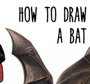 how to draw a bat for halloween drawing with kids video by drawingwithcoccinelle fawesometv - Halloween Pictures For Kids To Draw
