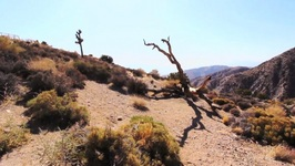 Joshua Tree National Park Ep - 10