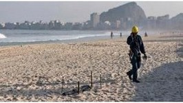 Mutilated Body Found on Rio Olympic Beach
