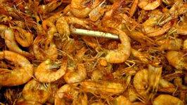 Steamed Shrimp - Steam Pot and Jet Burner Review