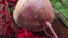5 Reasons you should be eating Beets