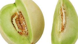 How to Start Honeydew Melon Seedlings Indoors