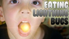 Glowing Lightning Bugs Gummy Candy - What's Inside Barry - Kids Candy Review