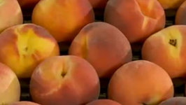 All about Peaches