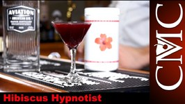 Hibiscus Hypnotist With Perfect Puree