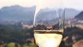 Jordan Winery Estate Tour & Tasting - Food & Wine Pairing Excursion in Healdburg, Sonoma County