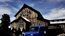 Apple Picking at Kuiper's Family Farm- Food Travels