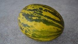 How to Prepare and Eat Santa Claus Melon - aka Christmas Melon, Piel de Sapo: CWK