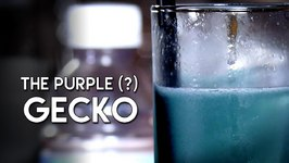 Purple Gecko Cocktail In Shades Of Blue