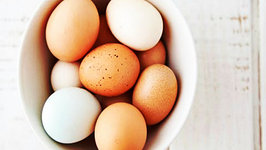 How to Boil an Egg - Quick Cooking Tips