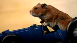 S03 E09 - Soap Box Derby - Once Upon a Hamster