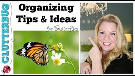 Organizing Tips and Ideas for Butterflies - ClutterBug Organizing Series