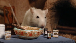 S02 E03 - King of the Riverbank - Once Upon a Hamster
