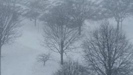 Several Inches of Snow Blankets Central Iowa