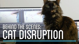 Cat Disruption  HTME: Behind the Scenes