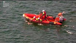 Coastguard Helicopter, Lifeboat Crew Work to Rescue Dog Swept to Sea