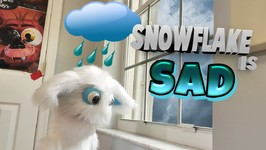 Snowflake is Sad !!! Important Lessons for Kids - Moral To Learn For Kids