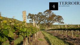 Knappstein Wines - Chapter 4- Terroir