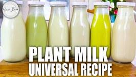 Best Plant Based Milk Universal Recipe / Nut Milk Recipe / Oat Milk Recipe / Also CREAM recipe