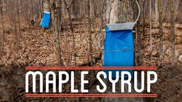 Maple Syrup - How To Make Everything- Root Beer Float (3/7)