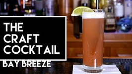 How To Make The Bay Breeze Cocktail -Bartending 101 -The Craft Cocktail