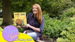 Snail Trail  Read By The Phonic Fairy