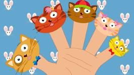 Kitten Finger Family - The Finger Family Song For Children - Nursery Rhymes