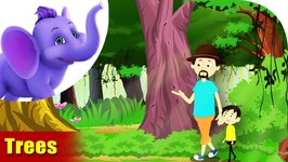 Trees - Environmental Song In Ultra HD 4K