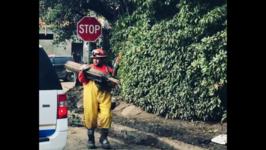 Search and Rescue Operations Continue in Montecito