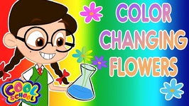 Color Changing Flowers - The Nikki Show - DIY Science  - Cartoons for kids