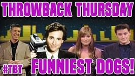 AFV's Throwback Thursday - Funniest Dogs