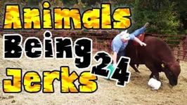 Thug Life - Animals Being Jerks - 24