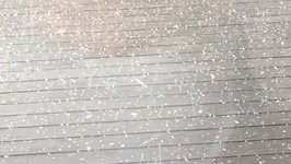 Hail Falls in West Auckland as Storm Hits New Zealand
