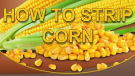 How To Strip Corn-Quick Tip