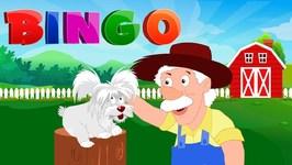 Bingo Song - Nursery Rhyme For Toddlers - Kindergarten Video For Children