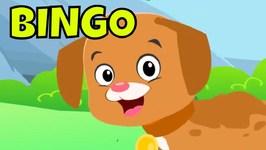 Bingo Song - Bingo Dog Song For Kids