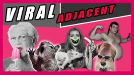 Welcome to Viral Adjacent