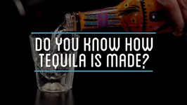Do You Know How Tequila Is Made?