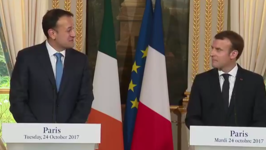 Irish Leader Shows Off Language Skills, Jokes About Joining 'Francophonie' in Remarks With Macron