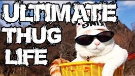 Thug Life - Animals Being Jerks - 10