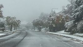 Snow Falls in Washington State as Winter Weather Moves East
