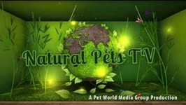 Natural Pets TV: Dog Edition - Dog Cancer - An Epidemic