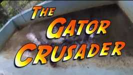 Gator Crusader Uses Animal Behavior to Predict Weather Forecast