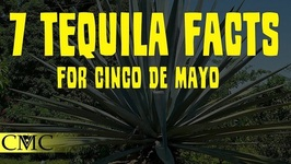 7 Tequila Facts For Cinco De Mayo- Tequila Styles, Agave And The Worm?