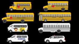 School Buses - Street Vehicles - Fun and Educational Learning Video