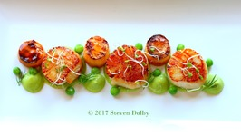 Pan-Fried Scallops With Rutabaga Fondant And Pea Puree